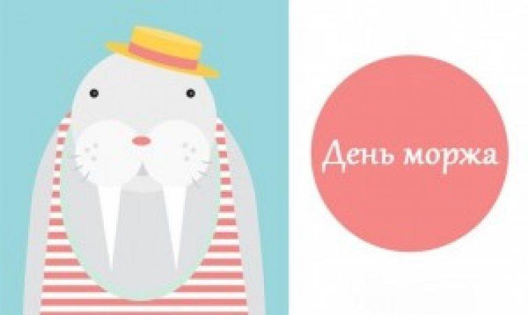 Открытки с моржами, картинки животными