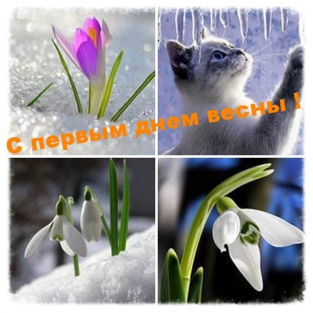 Открытки с первым днём весной