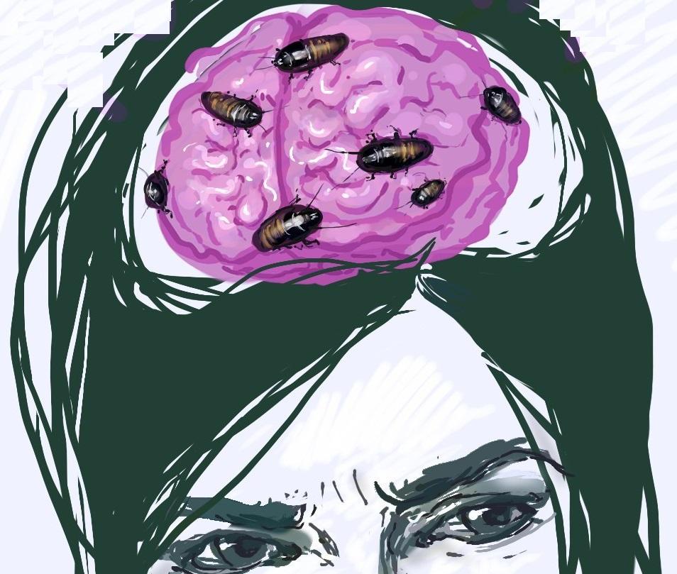 Картинки мозги женщины